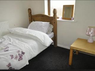 1 bedroom House with Internet Access in Sheffield - Sheffield vacation rentals