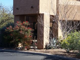 cozy condo in beautiful Catalina foothills - Tucson vacation rentals