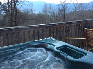 Love Nest Chalet, Views, Secluded & Location - Gatlinburg vacation rentals
