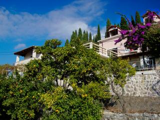 TH01422 Apartments Vila Eli / Two Bedroom A2 - Cavtat vacation rentals