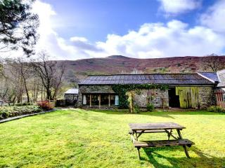 Perfect Cottage with Television and Microwave - Llanwrthwl vacation rentals