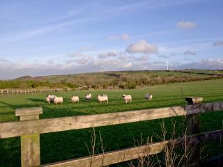 Lavender, Woodland Retreat located in Wadebridge, Cornwall - Wadebridge vacation rentals
