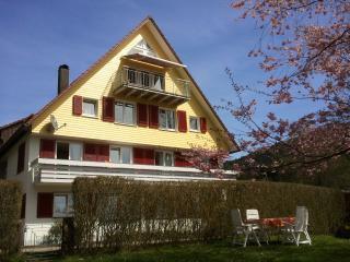 Cozy 2 bedroom Condo in Alpirsbach with Internet Access - Alpirsbach vacation rentals