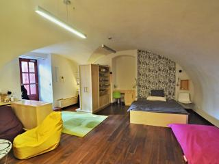 Cosy Apartment just under the Castle above the Charles Bridge - Prague vacation rentals