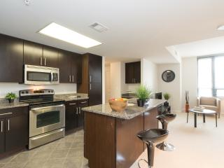 Amazing! Apartment in Arlington - Arlington vacation rentals