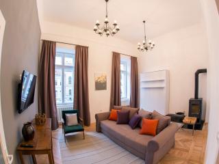 NEO Apartment Eroilor Cluj-Napoca Romania - Cluj-Napoca vacation rentals