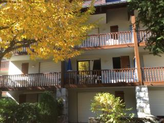 Romantic 1 bedroom Saint-Lary-Soulan Apartment with Toaster - Saint-Lary-Soulan vacation rentals
