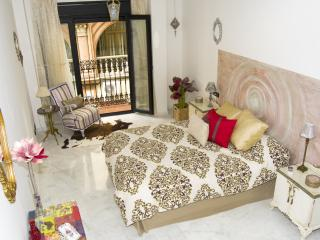 Francos, Seville Old Twon ,Luxury and Comfortable - Seville vacation rentals