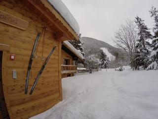 1 bedroom Chalet with Internet Access in La Thuile - La Thuile vacation rentals