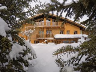 Chalet Alpina Mont Blanc 200m from the ski lifts - La Thuile vacation rentals