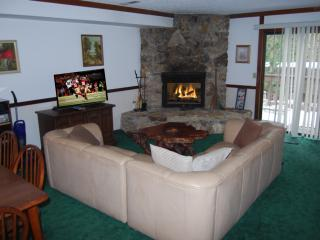 AVAIL.THIS WKND SkiTahoe,3BR close to skiing,casinos,access to Burnt Cedar Beach - Incline Village vacation rentals
