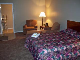 Nice Lodge with Long Term Rentals Allowed and Refrigerator - Hot Springs vacation rentals