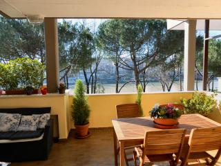 Terrace riverside- Amazing View - Central Location - Florence vacation rentals