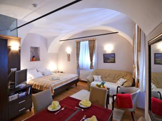 Bright 12 bedroom Varazdinske Toplice Guest house with Internet Access - Varazdinske Toplice vacation rentals