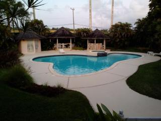 Country apartment polo estate - Bridgetown vacation rentals
