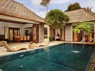 Luxury 1 Bedroom Villa with private pool in Sanur - Sanur vacation rentals