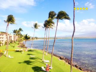 Window to the Whales *Unbelievable view~over 180* - Wailuku vacation rentals