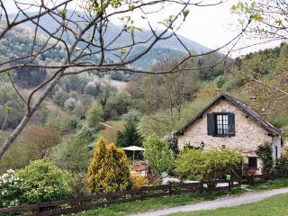 La Grange du Cindé 09140 Seix - Seix vacation rentals