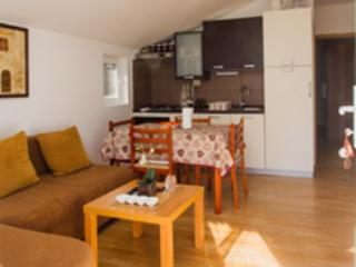 Beautiful 1 bedroom Condo in Zverinac - Zverinac vacation rentals