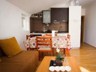 Beautiful 1 bedroom Condo in Zverinac - Zverinac vacation rentals