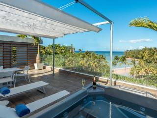 Special Offer in May, June: New Luxurious Penthouse With An Ocean View - Las Terrenas vacation rentals