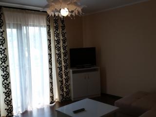 apartament Carmen - Piatra Neamt vacation rentals