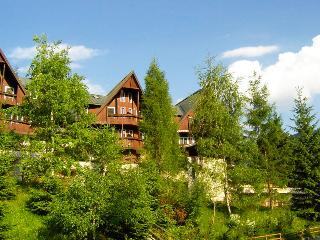 Cozy 1 bedroom Tarvisio Resort with Internet Access - Tarvisio vacation rentals