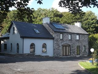 Perfect Condo with Internet Access and Satellite Or Cable TV - Ennistymon vacation rentals