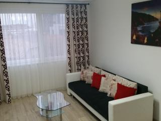 Cozy 1 bedroom Apartment in Piatra Neamt with Elevator Access - Piatra Neamt vacation rentals
