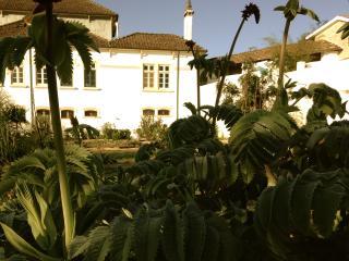 Latas Country House - Penacova vacation rentals