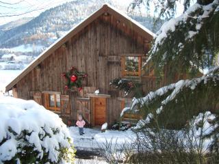 Gîte confortable **** Gérardmer / La Bresse - Gerardmer vacation rentals