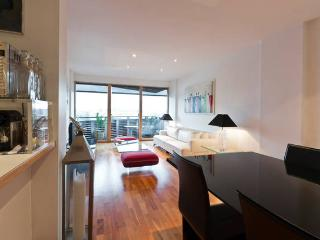 Stunning Flat Shoreditch/City/Angel - London vacation rentals
