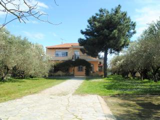 Villa Sofia / Family friendly - Stavros vacation rentals