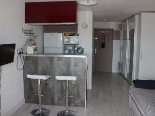 cap d'agde naturiste studio parking privé piscine - Cap-d'Agde vacation rentals