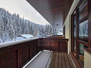 Nice 1 bedroom Apartment in Spindleruv Mlyn - Spindleruv Mlyn vacation rentals
