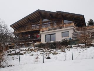 Bright Chatel Apartment rental with Internet Access - Chatel vacation rentals