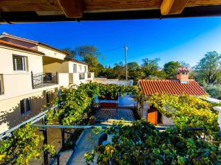 Vila Torine with a seasonal outdoor pool - Benkovac vacation rentals
