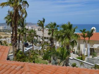 Casa de Las Flores - 3 Bedrooms - San Jose Del Cabo vacation rentals