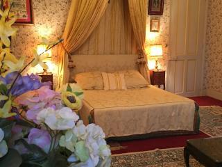 Chambre d'hôtes (Reine) au Château de la Tour - Rivarennes vacation rentals