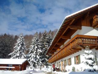 5***** Apart. Siebensteinkopf with south balcony - Spiegelau vacation rentals