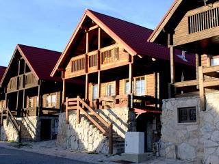 Cozy Penhas de Saude Chalet rental with Internet Access - Penhas de Saude vacation rentals