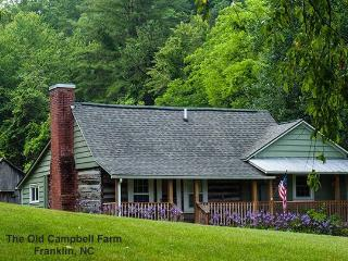 Historic Farmhouse - Easy Access, Restful Getaway - Franklin vacation rentals