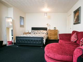 Spacious and Convenient Apt, in South Manchester. - Manchester vacation rentals