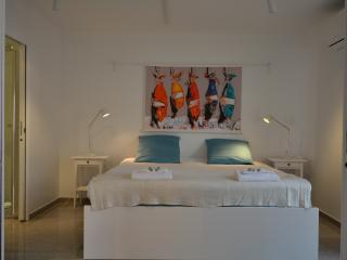 Mandariniers 22A - 3 bedroom/3 bathroom, balcony - Cannes vacation rentals