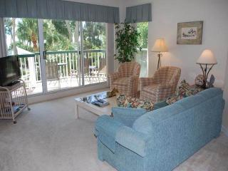 BA 106 - Hilton Head vacation rentals