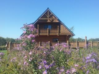 3 bedroom Cabin with Internet Access in Rose Creek - Rose Creek vacation rentals