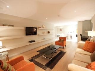5 Star Luxury at St Stephen's Green Park - Dublin vacation rentals