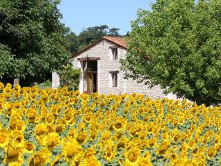 Stone Barn with Private Pool and Superb views - Barbezieux-Saint-Hilaire vacation rentals