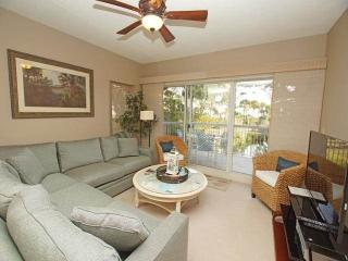 BA 102 - Hilton Head vacation rentals