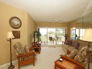 BA 406 - Hilton Head vacation rentals